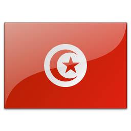 Флаг туниса фото флаг туниса цвета