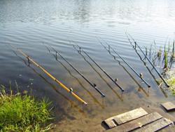 Самым простым и универсальным средством ловли является поплавочная удочка.