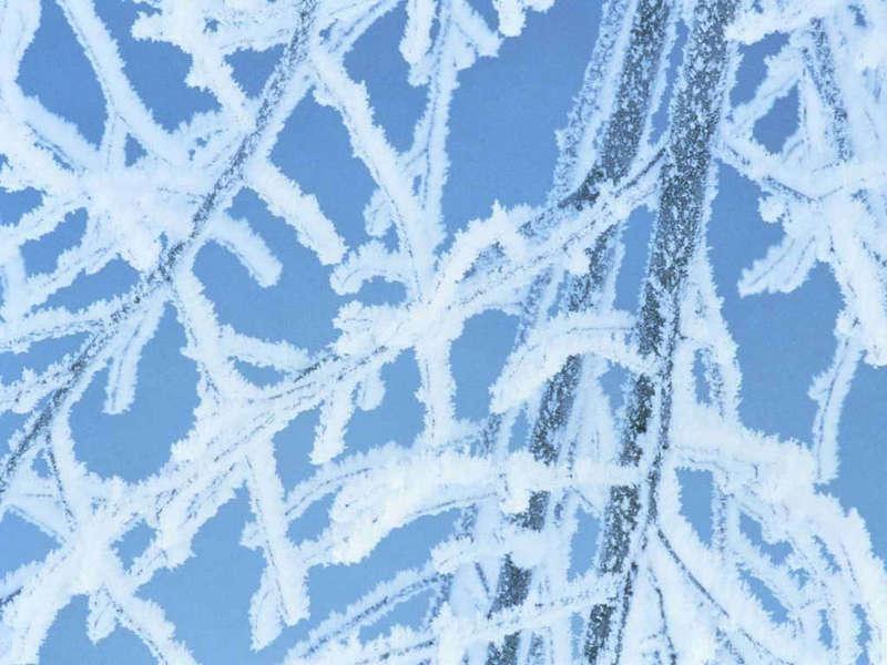 Зимней природы картинки зима природа