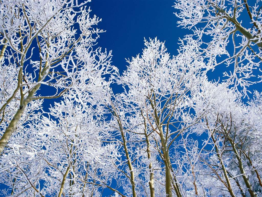 Зима зимний пейзаж красивые фото
