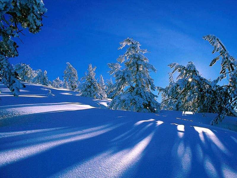 Красивые фото зима фото обои зима
