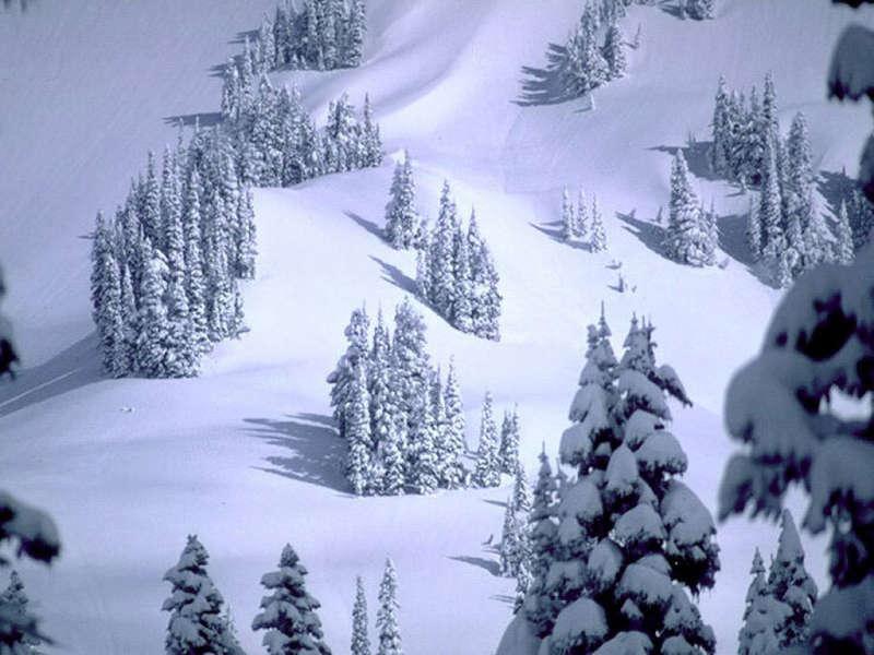 Зима красивые фотографии фото зима