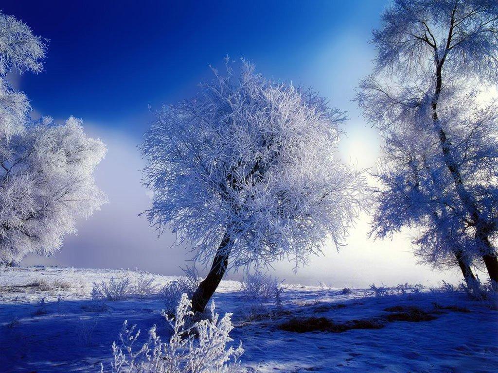 Фото зима фото зима зимние обои