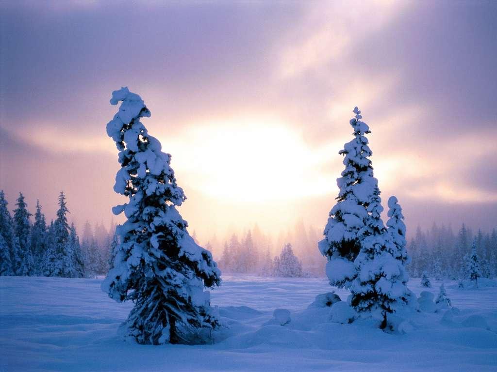 Картинки про зиму пейзажи