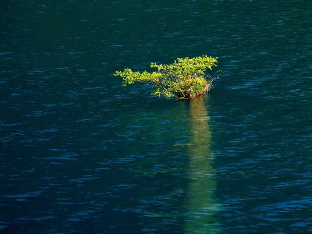 Природы китая фото китая природа